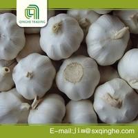 Garlic exporter in china