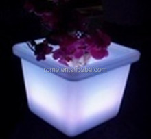 Light Up Pot Glowing Mood Light Flower Vase