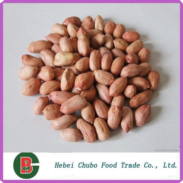 Arachides d cortiqu es arachides grill es plus grand arachide et graines de citrouille usine - Comment griller des arachides ...