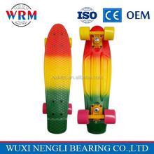 Professional fish cruiser skateboard tricolor 22'' skateboard