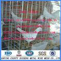 12 células galvanizado palomas jaula
