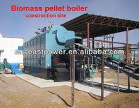 Coal & biomass pellet steam boiler