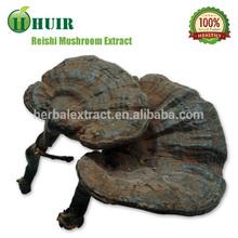 A base de hierbas extracto de hongo Reishi Soluble en agua extracto de hongo Reishi / 100% Natural polisacáridos 10% - 50%