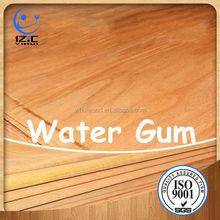 Água goma folheado de madeira laminado madeira compensada cozinha mobília de gabinete