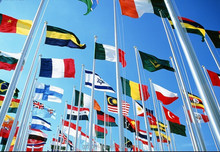 very very hot sale flags and national flag