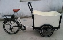 hot sale low price China trike/cargo bike