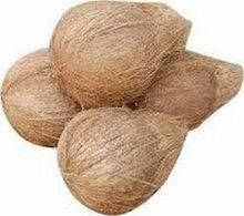 semi husked mature coconuts