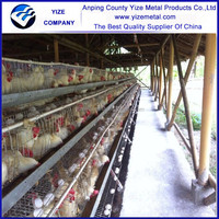 Canada farm chicken coop for layers / industrial chicken coop