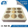 High Power Module Design 135pcs*3W LED Grow Lights, Full Spectrum
