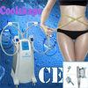 Multi-Functional beauty equipment cryolipolysis fat freeze slimming machine