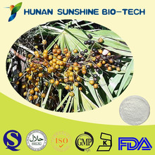 Saw Palmetto Fruit Extract / Serenoa repens (bartram) small/ Sabal Serrulata 25%-45% Fatty Acids