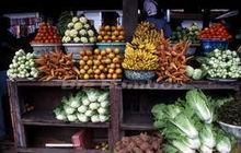 pumkin leaf,Snail,Honey,Ofada Rice,Galic,Palmoil,Kolanut,Ginger,Dry Fish,Stock fish,Ogbono,Onions,coco yam,Melon,pepper