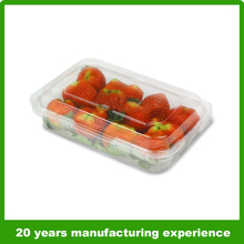 300g clear plastic apple fruit packaging boxes