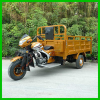 Hot Selling 3 Wheels Adult Tricycle Wholesale Cargo Trike for Sale