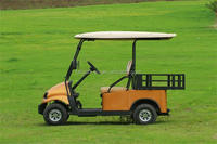 Wholesale 2 Seater vehicle electric golf car with stake bed, CE approved high quality all aluminum frame (R2SB3)