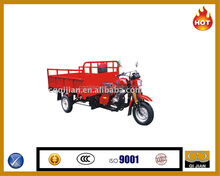 Best selling 200cc 250cc with 1000kg loading capacity twin cargo tricycle