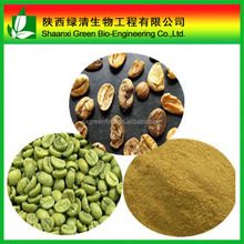 green coffee bean extract/chlorogenic caid Weight loss