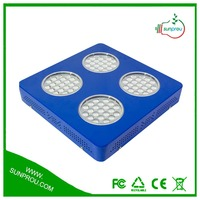 Scientific Name Of All Fruits 160w Led Grow Lamps Warranty With 3 Years 160W LED Grow Light From SUNPROU
