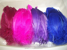 Wholesale Colorful Rooster Feather FH5014