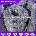 La distancia púa 4''/5''/6'' dongsheng buena qualityand bajo precio galvanizado alambre de púas