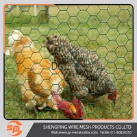 1/4 inch galvanzied chicken wire mesh & hexagonal wire mesh