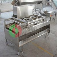 very popular full automatic tomatoes washer QM-2