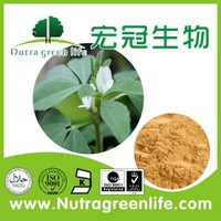 100% Natural High Quality Fenugreek Seed Extract 4-Hydroxyisoleucine