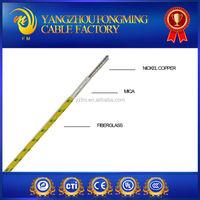 300V/600V high temperature wire electromotor wiring Yangzhou manufacturer