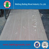 Chinese wood venner commercial plywood/ash wood plywood