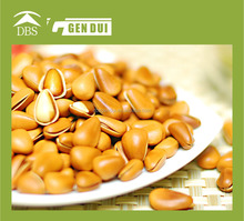 pine nut cheap pine nut kernels customized nut with plastic