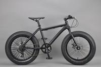 20 inch Fat bike big tire fat bike