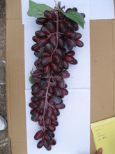 Cheap wholesale high quality grapes artificial fake flower cane decoration for sale