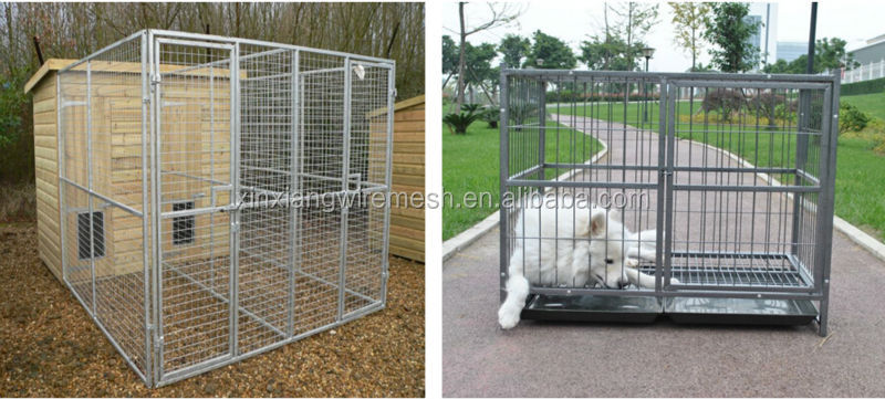 Anping lowes chain link dog kennel/cheap galvanizedl dog kennel wholesale