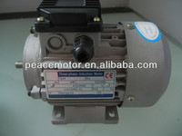 Y2 electric motor thermal protection