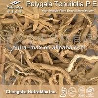 Siberian Milkwort Extract / Polygala Tenuifolia P.E.