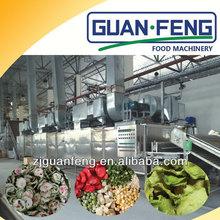 Belt drying machine cashew nut industrial food/fruit dehydrator