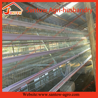 High quality automatic Feeding System poultry farming chicken coop