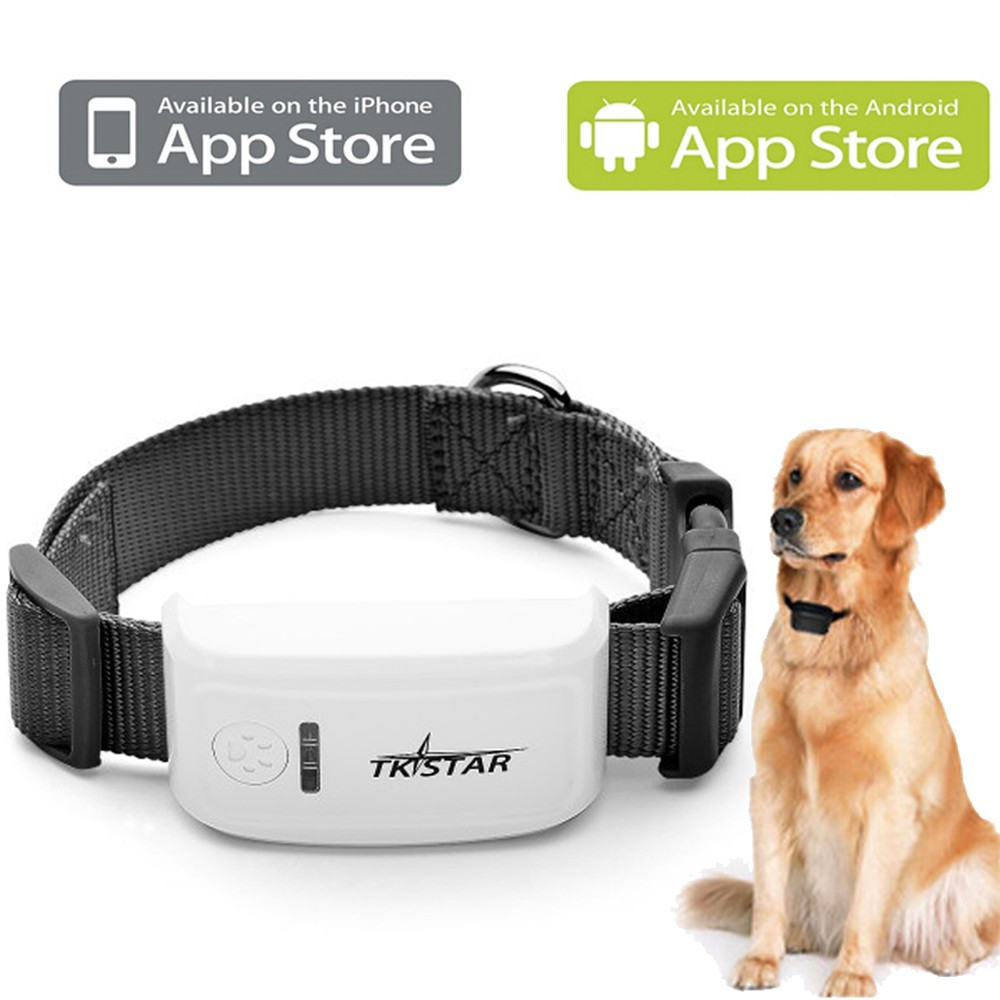 dog chip tracker app