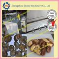 Chine professionnel noix de cajou usine de transformation