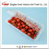 250g Rectangle Hinged Lid Box Fruit Packaging Box Plastic Blueberry Container