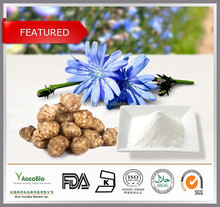 Natural Jerusalem artichoke extract wholesale, Inulin 90%, Pure Inulin powder