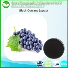 Black Currant Extract with 5%, 10%, 15%, 20%, 25% Anthocyanins