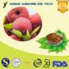 "100% Natural Herb Extraction Hawthorn Leaf Extract Vitexin-2"" -0-rhamnoside 2.0-30.0%"