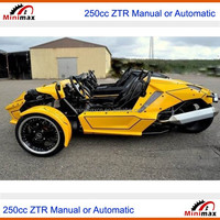 ZTR Trike Roadster 250cc or 500cc bigger engine latest 2015 Automatic or Manual Gears roof available EEC COC EPA DOT