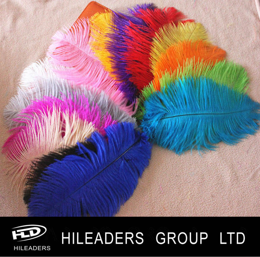 RT3255 Ostrich Feather Wholesale Feathers Sale