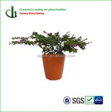 bamboo fiber small flower pot