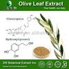 Halal&Kosher Olive Leaf Extract/Original Olive Leaf Extract/Olive Leaf Extract Side Effects