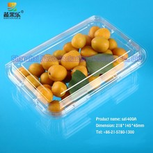 popular clear plastic recyclable fruit tray SGL-400A