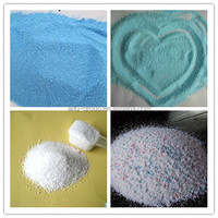 cleaning powder/glass cleaning powder/carpet cleaning powder