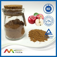 GMP&ISO Bottom Price Apple Extract